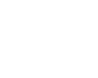 logo-n-socgeo